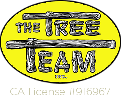 tree-team-inc Logo